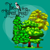 Estate Forest Tree verde e piccoli animali in natura selvaggia Alberi stabiliti di vettore del fumetto in parco all'aperto Alberi Fotografie Stock Libere da Diritti