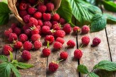 Estate fresca rasberry su fondo di legno Fotografia Stock