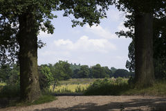 Estate. And grounds of english stately home stock photography