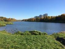 Estate indiana Lago city nel parco immagini stock