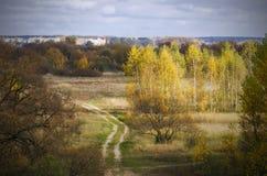 Estate indiana paesaggio Legno di autunno Borisov belarus Immagine Stock Libera da Diritti