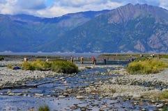 Estate nell'Alaska fotografie stock