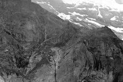 Estate nelle montagne svizzere - alpi di Bernese Immagini Stock Libere da Diritti