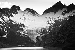 Estate nelle montagne svizzere - alpi di Bernese Immagine Stock