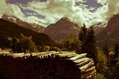 Estate nelle montagne svizzere - alpi di Bernese Immagine Stock Libera da Diritti