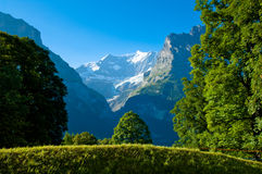 Estate nelle montagne svizzere - alpi di Bernese Fotografie Stock