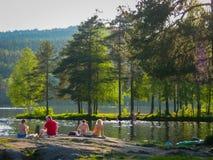 Estate in Norvegia fotografie stock libere da diritti