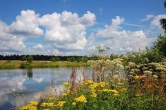 Estate piacevole, giorno di estate piacevole Fotografia Stock Libera da Diritti