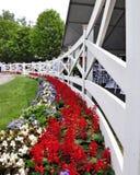 Estate in Saratoga fotografia stock libera da diritti