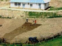 Estate Tajik peasant Royalty Free Stock Image