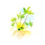 Estate tropicale di colore di lerciume dell'isola della palma Fotografie Stock
