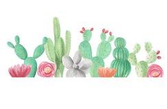 Estate verde della primavera di nozze della struttura dei succulenti dei cactus del cactus del confine dell'acquerello Fotografia Stock Libera da Diritti