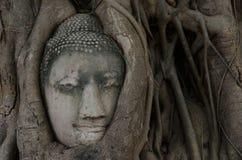 Estatua antigua de Buda en Ayutthaya Foto de archivo libre de regalías