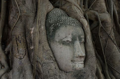 Estatua antigua de Buda en Ayutthaya Imagen de archivo libre de regalías