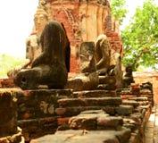 Estatua antigua de Buda en el templo de Mahathat, sitio histórico en la provincia de Ayuttaya, Tailandia Fotografía de archivo libre de regalías