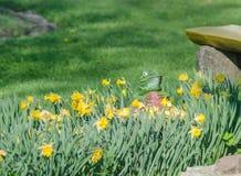 Estatua artificial de la rana cerca de las flores Fotografía de archivo
