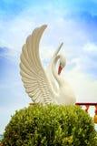 Estatua blanca del cisne en templo Imagen de archivo libre de regalías