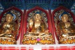 Estatua budista Imagenes de archivo