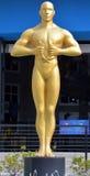 Estatua de Óscar del gigante Fotos de archivo