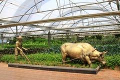 Estatua de bronce en la agricultura moderna que cultiva la exposición de la escultura Foto de archivo