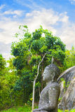 Estatua de Buda contra un bosque tropical en Sri Lanka Fotos de archivo libres de regalías
