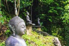 Estatua de Buda contra un bosque tropical en Sri Lanka Imágenes de archivo libres de regalías