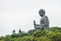 Estatua de Buda del gigante Fotos de archivo libres de regalías