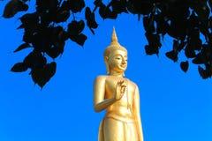 Estatua de Buda del oro con el cielo en el fondo Imagen de archivo