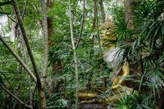 Estatua de Buda en bosque, meditación profunda en selva, paz y naturaleza Foto de archivo
