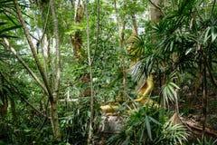 Estatua de Buda en bosque, meditación profunda en selva, paz y naturaleza Fotografía de archivo libre de regalías