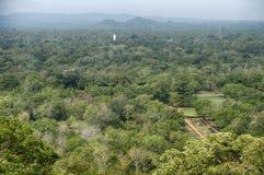 Estatua de Buda en Forest Near Sigiriya Imágenes de archivo libres de regalías
