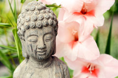 Estatua de Buda en un jardín de flores con la flor rosada Imagen de archivo libre de regalías
