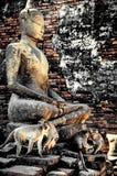 Estatua de Buda en Wat Yai Chaimongkol Ayutthaya Bangkok Tailandia Imagen de archivo