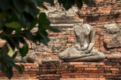 Estatua de Buda que medita debajo del árbol, Ayuthaya Foto de archivo libre de regalías