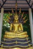 Estatua de Buda que se sienta en el rey del naga Foto de archivo