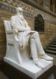Estatua de Darwin Fotografía de archivo