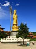 Estatua de Guanyin del oro del templo de Yuantong Foto de archivo libre de regalías