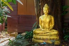 Estatua de oro de Buda en el templo de Rongngae en Nan Province, Thailan Foto de archivo libre de regalías