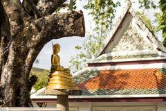 Estatua de oro de Buda en templo Fotos de archivo libres de regalías