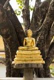 Estatua de oro de Buda en templo Fotografía de archivo libre de regalías