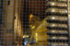estatua de oro de descanso de Buda en el pho del wat en Bangkok, Tailandia fotografía de archivo