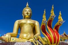 Estatua de oro grande de Buda y estatua del rey de la serpiente en templo budista Imágenes de archivo libres de regalías