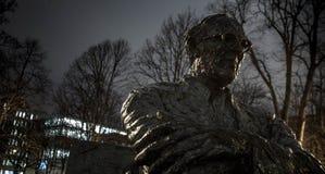 Estatua de Patrick Kavanagh Fotografía de archivo