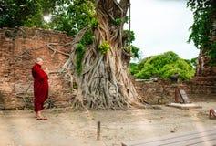 Estatua de piedra de Buda de la cabeza del monje que adora budista con i atrapado Fotografía de archivo libre de regalías
