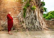 Estatua de piedra de Buda de la cabeza del monje que adora budista con i atrapado Imagen de archivo