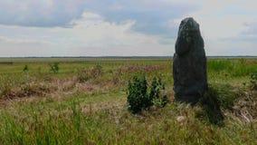 Estatua de piedra en el fondo del cielo y de la estepa ucraniana, Askania-Nova almacen de metraje de vídeo