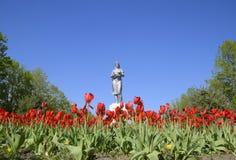 Estatua de un granjero colectivo en un pedestal La herencia de la era soviética Una cama de flor con los tulipanes y los árboles  Imagenes de archivo