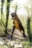 Estatua del dinosaurio del Allosaurus que se coloca en el bosque fotografía de archivo