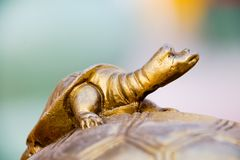 Estatua del dragón chino Imagenes de archivo