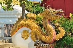 Estatua del dragón en la pared del templo Foto de archivo